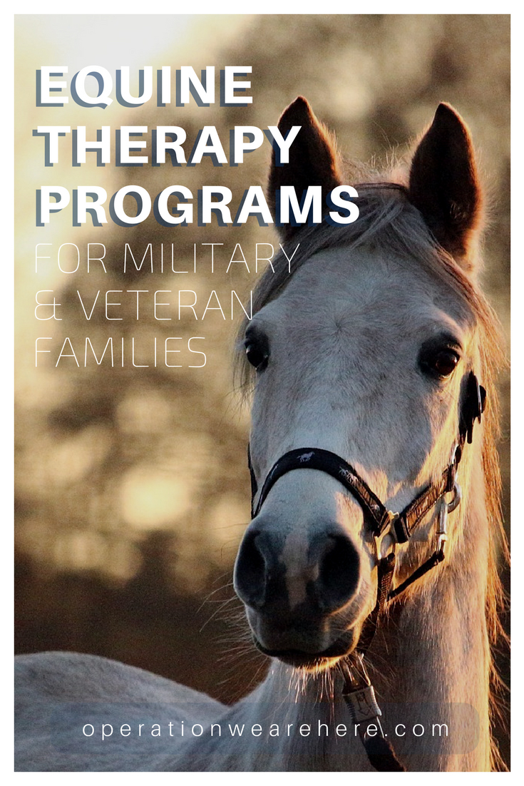 Free equine therapy programs for military & veteran families