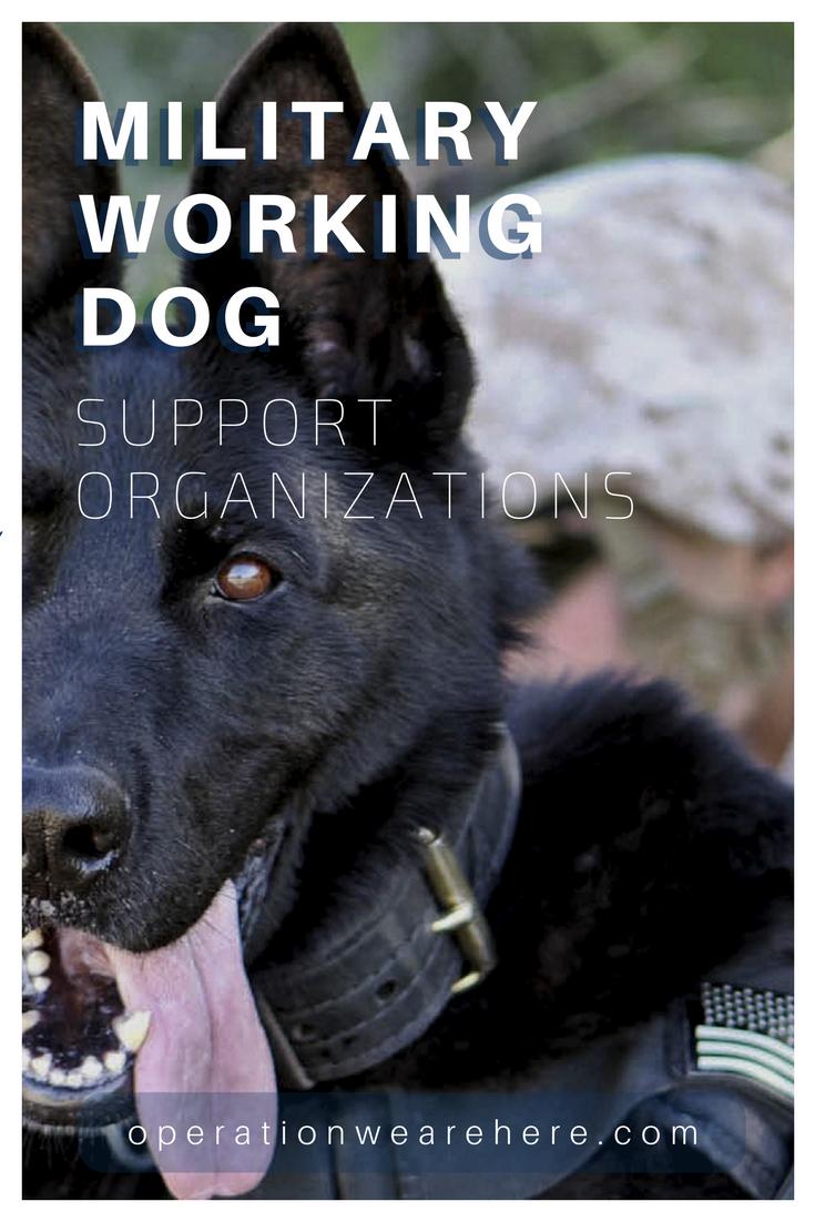 Military working dog support organizations military working dog handler support organizations deployment m4hsunfo