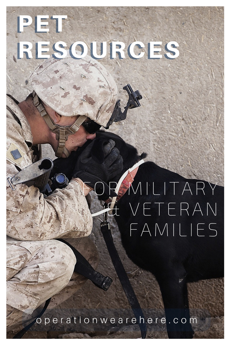 Pet foster care during deployment, military pet adoption, pet adoption from Afghanistan, homeless veteran assistance with pet needs